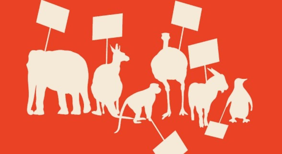 animal rights dating uk